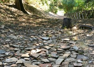 Walking up Monte Testaccio during a tour, the path is made entirely of pot sherds