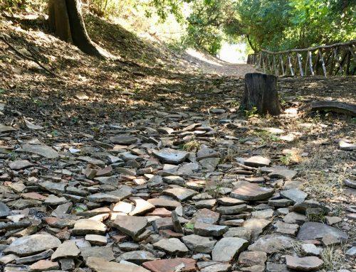 Monte Testaccio — Imperial Rome's Broken Pottery Garbage Heap
