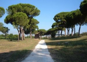 Via Latina Tombs - Rome Tours